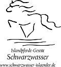 Isländer Gestüt Schwarzwasser